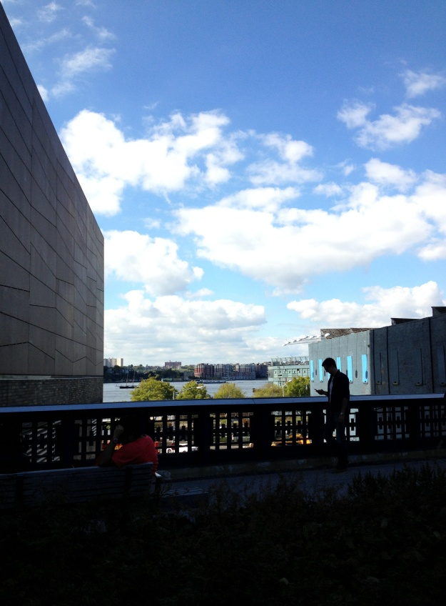 Walking the High Line...beautiful.